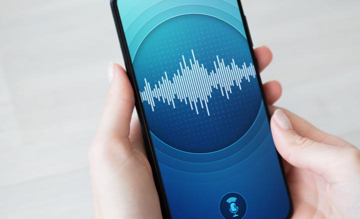 Audio-Annotation-1